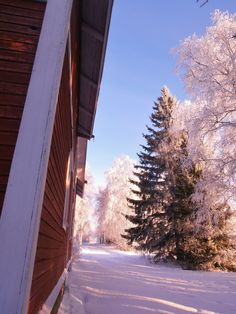 Winter day at home.