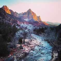 """Zion National Park in Springdale, UT  More hiking! Explore """"The Subway"""" and """"The Narrows"""""""