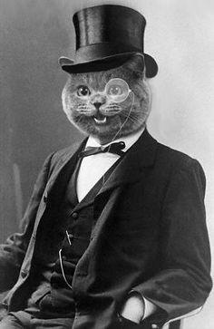 Anthropomorphic ~ cat dandy cat in black suit black tie black top hat monocle eyeglasses art Animal Original, Gatos Cats, Cat People, Vintage Cat, Funny Vintage, Animal Heads, Cool Cats, Pet Portraits, Cat Art
