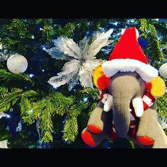 Christmas is Just Around the Corner!    #xmas #xmastree #xmasdecorations #southampton #elephant