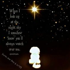 When I look up at the night sky, I somehow know you'll always watch over me. Miss You Mom, I Miss Her, Mom And Dad, Pet Loss Quotes, Dog Quotes, Dog Poems, Qoutes, I Love Dogs, Puppy Love