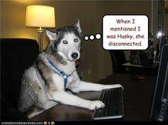 awe #poor #dog  #humor
