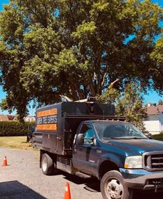 Aspen Tree Experts provides you Hedge Trimming in Orleans village - chateauneuf Aspen Trees, Hedges, Perfect Place, Living Fence, Shrubs, Natural Privacy Fences