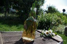 NÁVOD: Vyrábíme jarní ocet -  ( DIY, Hobby, Crafts, Homemade, Garden, Creative, Ideas)