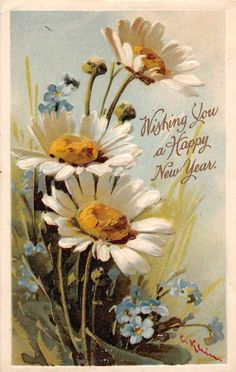 New Year Greetings White and Blue Flowers Signed Klein Antique Postcard J52501