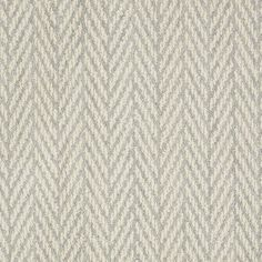 Shop STAINMASTER Active Family Apparent Beauty Silver Spruce Level Loop Pile Indoor Carpet at Lowes.com