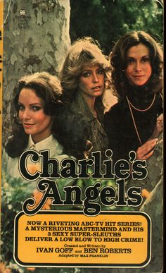 CHARLIES ANGEL'S NOVEL 1976