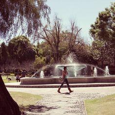 Uno de nuestros lugares favoritos, la fuente de los jardines centrales #UDLAP #Fuente #Campus #jardines