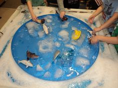 We used a water tray filled with large ice bricks, surrounded by rocks and pool salt to create 'Greenland' as we explored life in different habitiats.