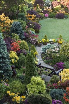 My favorite garden for the combination of plants, making this garden look amazing in every season.