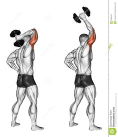 Tríceps con mancuerna