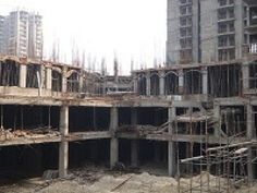 Construction View of  Casa Greens 1 Gr. Noida (West) Infographic