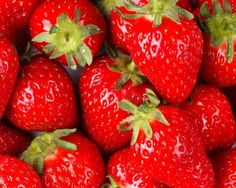 Strawberries are wonderful fruits packed with nutrients and flavor! But you definitely don't have to eat them plain. Try one of these delicious strawberry recipes. Hydroponic Strawberries, Grow Strawberries, Stuffed Strawberries, Covered Strawberries, Strawberry Bread, Strawberry Shortcake, Strawberry Plants, Giant Strawberry, Strawberry Balsamic