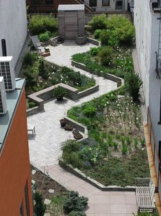 """Brooklyn-based garden designer Cynthia Gillis conceived a 'zig-zag' plan based primarily on triangular shapes. """"It makes the spaces more interesting than having a rectangle, and gave us a way to have a longer path, rather than a straight line,"""" she says. Raised beds with retaining walls of stacked bluestone are connected by paths made of leftover scraps of ipe wood. The separate triangles have different kinds of soil for different types of plant material."""
