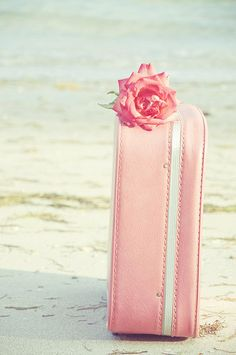 Beautiful colorful pictures and Gifs: Color splash pink photos-Rosado Pretty In Pink, Pink Love, Pale Pink, Pink Color, Hot Pink, Dusty Pink, Pink Suitcase, Pink Luggage, Leather Suitcase