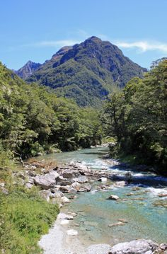 The Routeburn Track - NZ Best hiking trips New Zealand #newzealandhikes #tuitrip #rimutrip