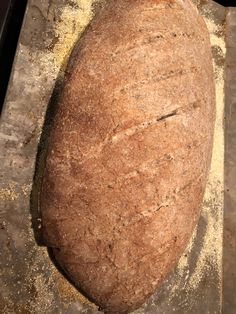 Delicious Homemade Rye Bread doesn't get much simpler than this bakery style artisan bread. Caraway and rye flour gives the bread its distinct flavor. Bread Machine Rye Bread Recipe, Rye Bread Recipes, Bread Dough Recipe, Bread Bun, Bread Rolls, Homemade Rye Bread, Cobbler Crust, Stuffed Bread, Muffin Bread