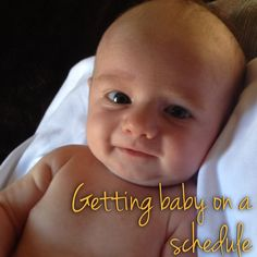 """I started sleep training Hunter at just about 4 weeks old. He was quite the alert and awake baby. My mother in law says that """"wide awa. My Baby Girl, Our Baby, Baby Sleep Schedule, Newborn Care, Infant Care, After Baby, Everything Baby, Baby Time, First Baby"""