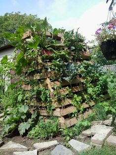 Vertical hugelkulture with pallets
