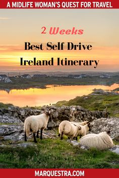 ireland travel A 7 Day Itinerary of both the West and East Coast of Ireland, full of amazing sights including the iconic Wild Atlantic Way and spectacular Antrim Coast. Ireland Travel Guide, Europe Travel Guide, Europe Destinations, Travel Guides, Budget Travel, Backpacking Europe, Belfast, Bucket List Europe, Bucket Lists