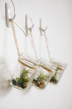 décoration interieur avec plantes | Décoration suspendue avec une plante d'intérieur