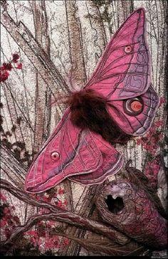 Realistic textile art by Australian artist Annemieke Mein  Pink emperor gum moth