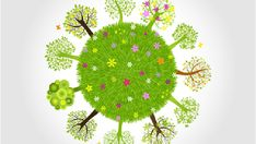 Searched for: Teaching environmental awareness