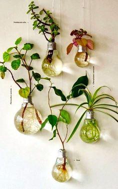 Le vecchie lampadine a incandescenza non servono più? Anziché gettarle via ecco due idee davvero originali per dar loro nuo...