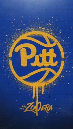 Pittsburgh Sports, University Of Pittsburgh, Panther Nation, Pitt Panthers, Tech Background, Ohio River, City Limits, Environmental Design, State Parks