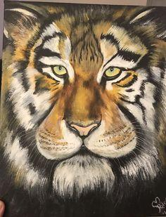 Kaylas Tiger