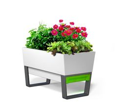 self watering planters gift for flower lover