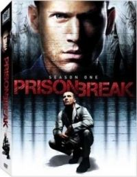 Prison Break — After getting himself incarcerated in Fox River State Penitentiary to free his wrongly accused brother, Lincoln Burrows, Michael Scofield is now on the loose along with his brother and six other convicts. Michael Scofield, Bon Film, Film D'animation, Film Serie, Tv Series To Watch, Series Movies, Movies And Tv Shows, Broken Movie, Vintage Tv