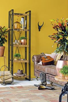 Gele muur met hout en koperen items