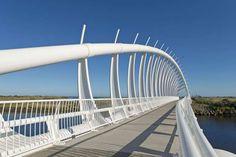 Te Rewa Rewa Bridge, New Zealand - REX Features