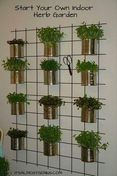 Indoor Herb Garden - no instructions on the website, but it