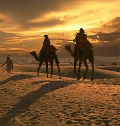 Camel Safari in India. jasailmer