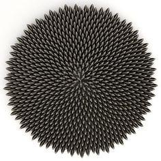 Sunflower seeds arranged in golden ratio placement, computer-aided placement. Fractal Geometry, Sacred Geometry, In Natura, Golden Ratio, Sunflower Seeds, Flower Of Life, Geometric Art, Op Art, Optical Illusions