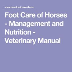 Foot Care  of Horses - Management and Nutrition - Veterinary Manual