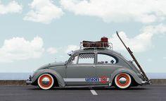 76 beetle
