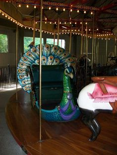 Carousel Merry-go-round peacock. Beautiful Horses, Beautiful Birds, Carosel Horse, Peacock Colors, Pretty Animals, Night Circus, Merry Go Round, Fantasy, Amusement Park