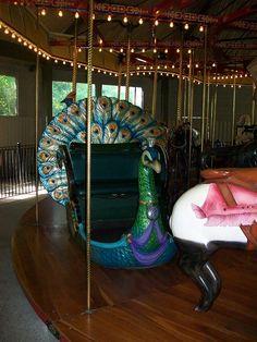 Merry-go-round peacock