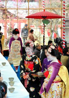 Geiko and Maiko girls at the traditional tea ceremony in Kyoto, Japan.