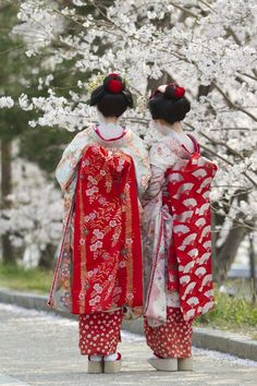 These are actually Maiko. The red in their hair gives them away.