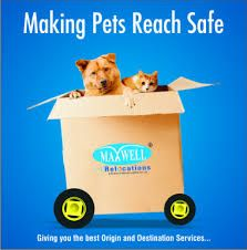 Image result for pet relocation services