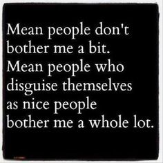 Mean people do bother me but those who lie thru their teeth and have multiple personalities need to be locked up!! Life Quotes Love, Great Quotes, Quotes To Live By, Me Quotes, Funny Quotes, Inspirational Quotes, Daily Quotes, Wisdom Quotes, Idiot Quotes