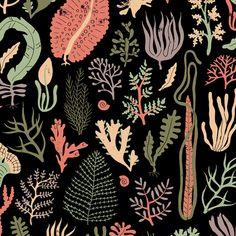 Harriet Taylor Seed | Illustrator | Central Illustration #decorative #detail #pattern #illustration