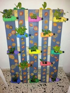 Cómo tener un huerto saludable en casa, Descubre que plantas sembrar en un huerto vertical: http://jardinesdecasas.com/como-hacer-un-huerto-vertical/