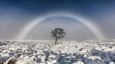 Picture supplied by Melvin Nicholson   (Geoff Robinson Photography) 07976 880732.   A photographer has taken a picture of a beautiful WHITE rainbow in the Scottish mountains.  Melvin Nicholson captured a stunning photo of a rare FOG BOW on Rannoch Moor whilst out walking on Sunday November 20th.  A fog bow is a colourless rainbow made up of tiny water droplets that cause fog. Due to the small size of the water droplets it has very weak colours, with a red outer edge and bluish inner edge…