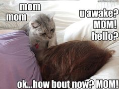This is me and Gus Gus at about 4am....EVERY MORNING!!