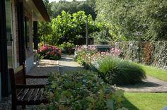 organisch tuinontwerp - Google zoeken